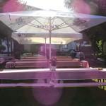 Grillen - Garten gegen Sonne #1